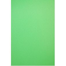 Фон виниловый Savage Infinity Vinyl Chroma Green 2.43m x 3.04m