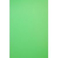 Фон виниловый Savage Infinity Vinyl Chroma Green 1.52m x 3.65m