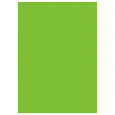 Фон виниловый Savage Infinity Vinyl Chroma Green 3.04m x 6.09m