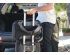 Рюкзак Peak Design Everyday Backpack 20L Ash (BB-20-AS-1)