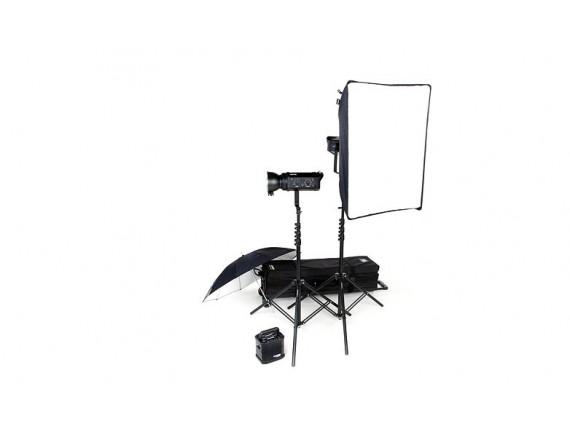 Набор студийного света BOWENS GEMINI 500C/500C TRAVEL PAK KIT (BW-4970)