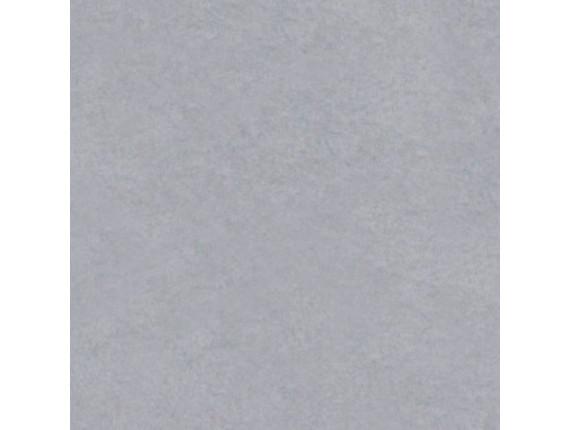 Фон виниловый LASTOLITE Grey 2.75x6m (7770)
