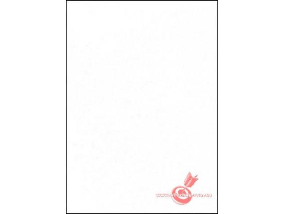Фон виниловый LASTOLITE Super White 2.75x6m (7761)