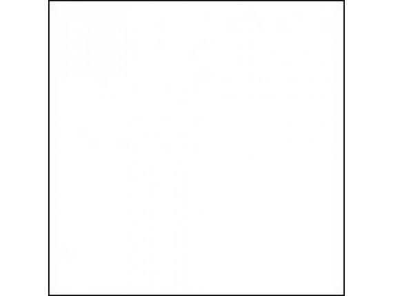 Фон бумажный LASTOLITE White 2.75x11m (9050)