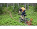Рюкзак Lowepro Photo Sport 200 AW orange