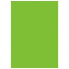Фон виниловый Savage Infinity Vinyl Chroma Green 2.74m x 6.09m (Chroma key)